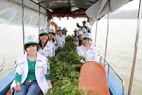 Employees bring trees to plant on island of Ben En National Park, Thanh Hoa province